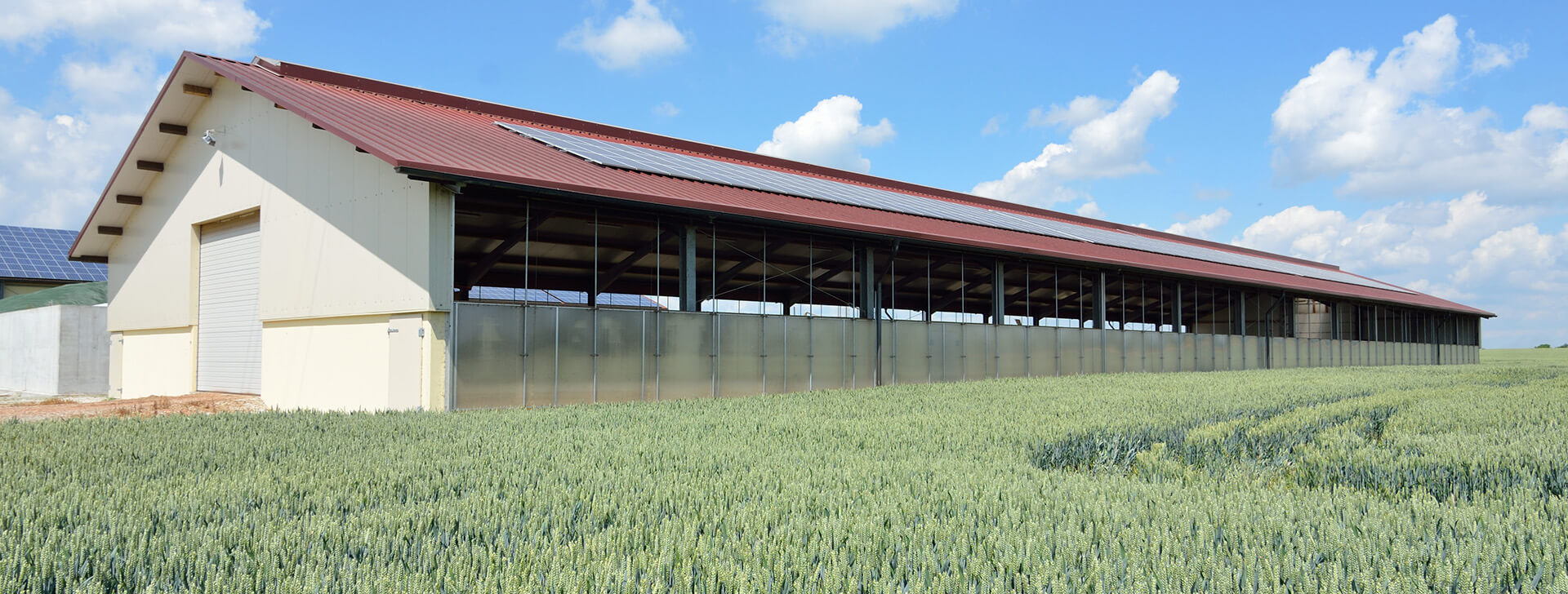 friedman cattle uses building copy britespan when agricultural buildings barns